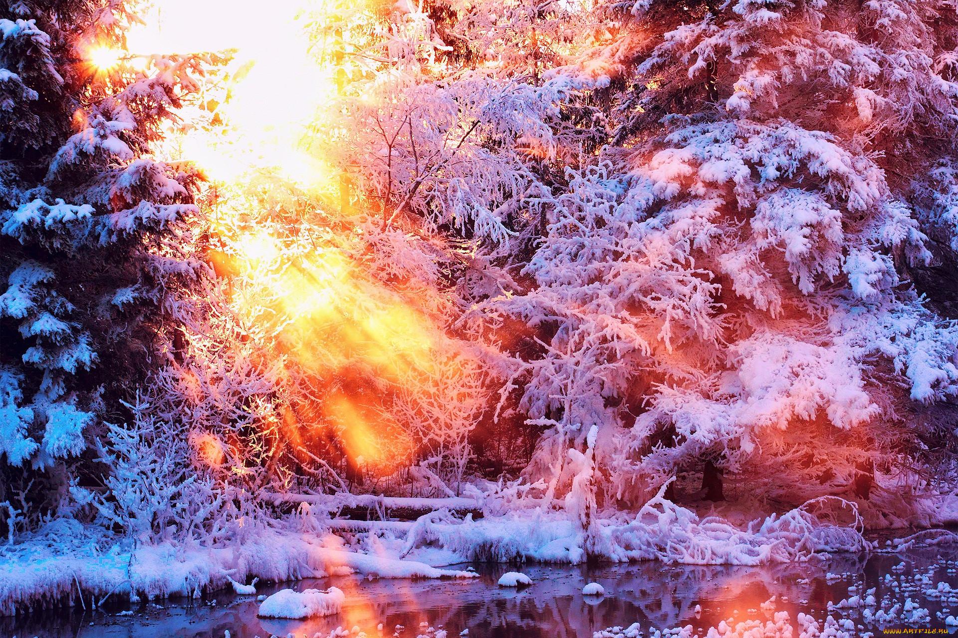 это яркое зимнее солнце гиф картинки все перепробовать